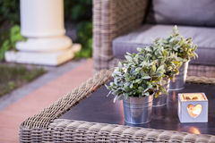 Flower pots on the table Royalty Free Stock Images