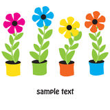 Flower pots. Vector card. Royalty Free Stock Image