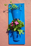 Flower pots on a wall Stock Photography