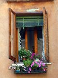 Flower Pots on Window Sill, Venice,  Italy Royalty Free Stock Photography