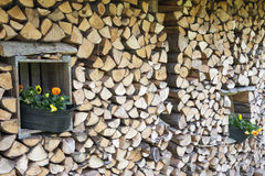 Flower pots in the woodsheds. Stock Photos