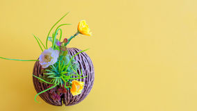 Flower in potted on yellow table. Flower in potted on yellow color table Royalty Free Stock Photography