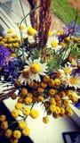 Flower power Fotografía de archivo libre de regalías