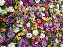 Flower Power. A beautiful background of flowers, colourful and vibrant and gorgeous  Almost able to touch and smell them a cacophony of beauty Royalty Free Stock Photo