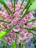 Flower power. Pile of beautiful flowers, roses, of rose color, dozens of flowers of different colour, flower show, florist industry, pack of Stock Image