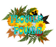Flower power, retro lata sześćdziesiąte kwiecisty przygotowania Obraz Stock