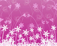 Flower on purple background Stock Image