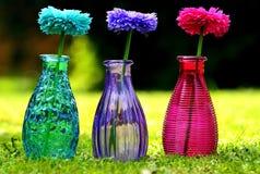Flower, Purple, Glass Bottle, Vase stock images