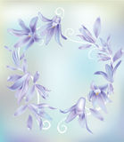 Flower purple. This is vector Illustration of purple flower Royalty Free Stock Photos
