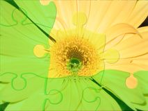 Flower puzzle. Green and yellow pieces of puzzle Royalty Free Stock Photo