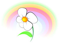 Flower and rainbow. A coloured rainbow with flower. Vector picture stock illustration