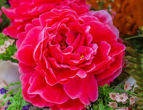 Flower Red. Candle Festival Loei Thailand June 28, 2014 Royalty Free Stock Photos