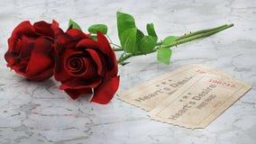 Flower, Red, Garden Roses, Rose