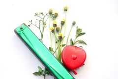 Flower with red hearth and mouth organ Royalty Free Stock Photos