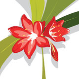 Flower red Lily vector illustration. Flower red Lily with leaves vector illustration royalty free illustration