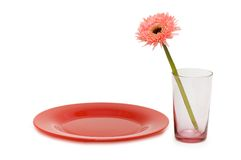 Flower and red plate isolated. On the white Royalty Free Stock Images
