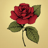 Flower red rose. Hand drawing. Bud, red petals, green leaves and stem on a yellow background. Card, print, decor element, textile Stock Photo