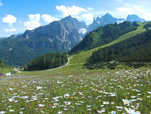 Flower road house mountain sky dolomites italy stock images