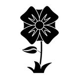 Flower romantic natural icon pictogram Royalty Free Stock Image