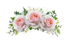 Flower rose Bouquet vector design wreath. Peach, pink roses, eucalyptus, blue privet berry herbal plant mix. Greeting cute lovely. Floral card elegant element royalty free illustration