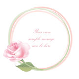 Flower Rose frame isolated. Floral  decor. Flower decor. Flower rose background . Floral frame with pink roses Royalty Free Stock Images