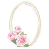 Flower Rose frame isolated. Floral  decor. Stock Image