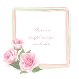 Flower Rose frame isolated. Floral  decor. Flower decor. Flower rose background . Floral frame with pink roses Stock Photos