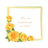 Flower Rose frame isolated. Floral  decor. Stock Photos