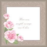 Flower Rose frame  on white background. Floral  decor. Flower decor. Flower rose background . Floral frame with pink roses Royalty Free Stock Photo