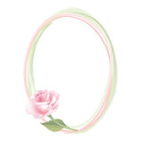 Flower Rose frame  on white background. Floral  decor. Flower decor. Flower rose background . Floral frame with pink roses Stock Photography
