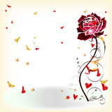Flower rose Royalty Free Stock Images