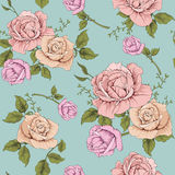 Flower rose vintage illustration. This is vector of flower pattern seamless Royalty Free Stock Image