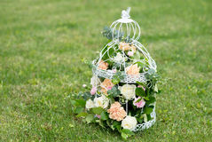 Flower, roses in birdcage shabby chic. Green grass background Stock Image