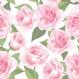 Flower roses. Floral seamless background. Flower pattern. Stock Photo