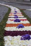 Flower rug Stock Image