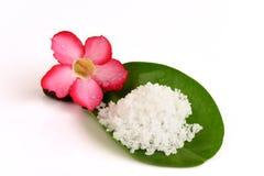 Flower of salt. Stock Images