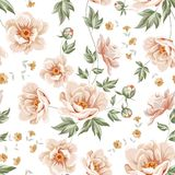 Flower samless pattern. Royalty Free Stock Image