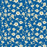 Flower samless pattern. Royalty Free Stock Photography