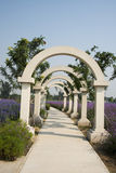 The flower of the sea, arch  gate, park landscape Royalty Free Stock Photos