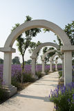 The flower of the sea, arch  gate, park landscape Stock Photo