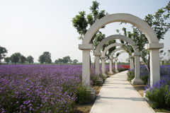 The flower of the sea, arch  gate, park landscape Stock Images
