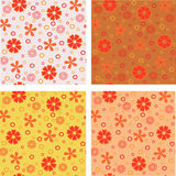 Flower seamless backgrounds set. Four colours flower backgrounds textures set Stock Photography