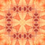 Flower seamless pattern (7) stock photography