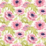 Flower seamless pattern with anemones. Stock Photography