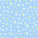 Flower seamless pattern background Royalty Free Stock Photo