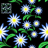 Flower seamless Pattern with blue Flowers on black Royalty Free Stock Image