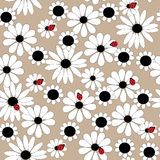 Flower seamless pattern with daisies and ladybirds. Flower seamless pattern with a daisies and ladybirds Royalty Free Stock Image