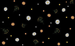Flower seamless pattern. Field herbs daisy textile print decoration black background fashion traditional vector Royalty Free Stock Images