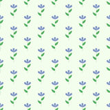 Flower seamless pattern, floral background, vector Stock Photography