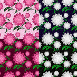 Flower seamless pattern in four variants Royalty Free Stock Photo